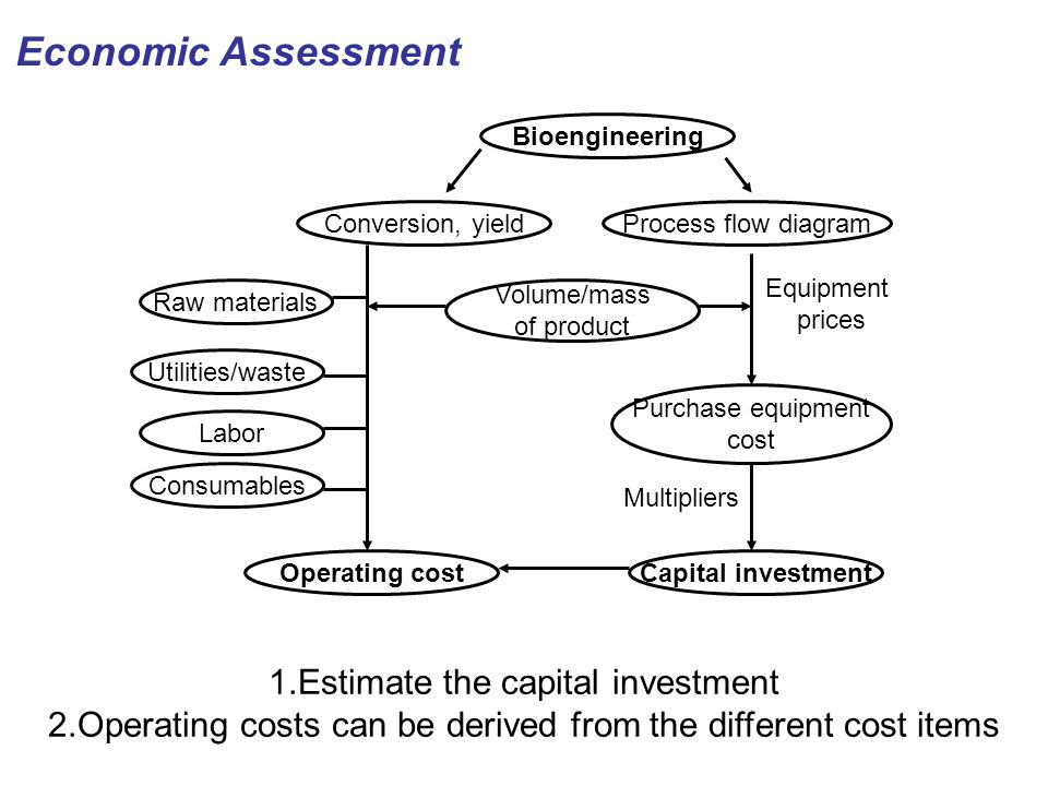 Economic Assessment 1.Estimate the capital investment