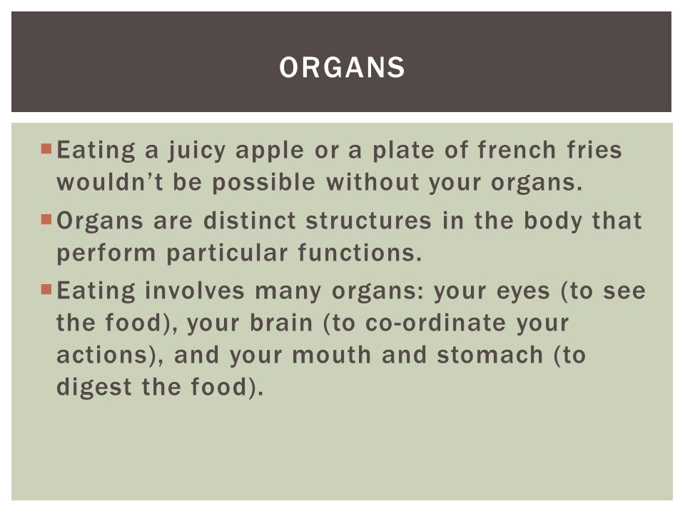 Organs Eating a juicy apple or a plate of french fries wouldn't be possible without your organs.
