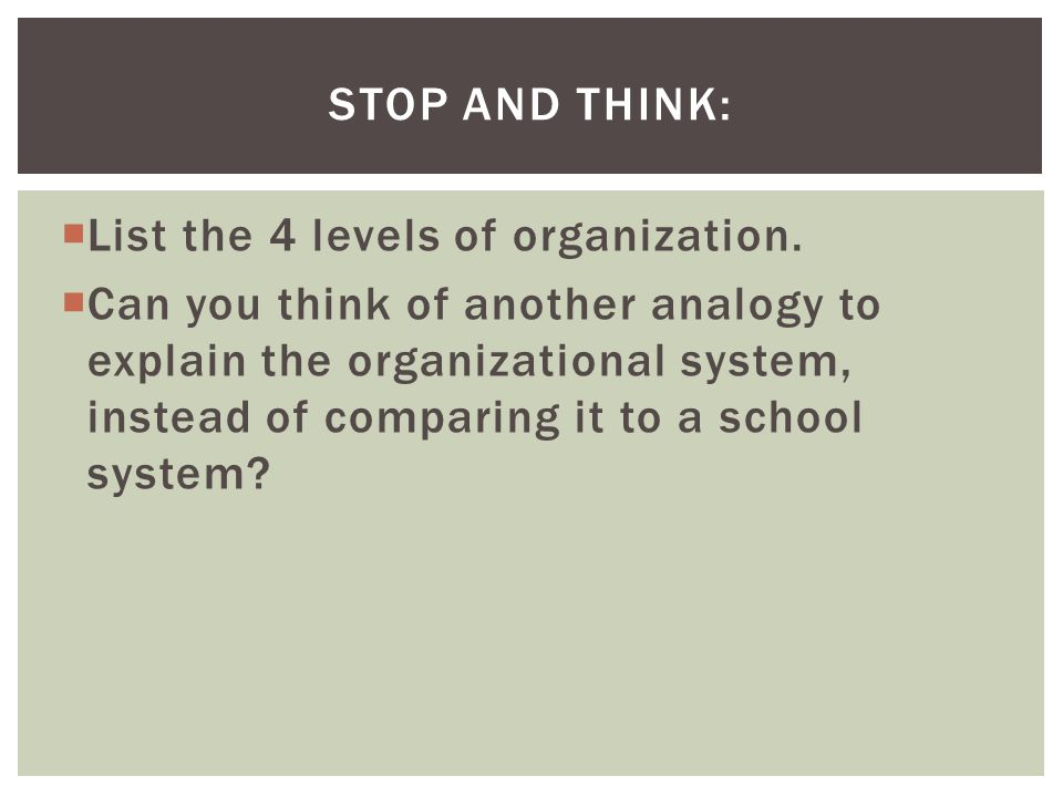 Stop and Think: List the 4 levels of organization.