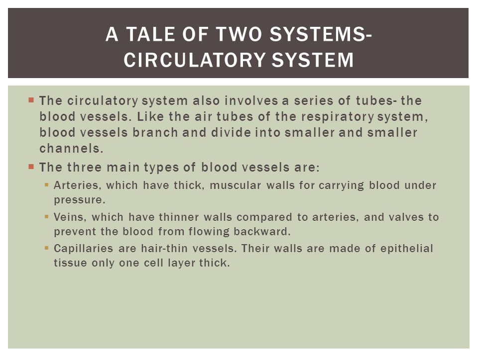 A tale of two systems- circulatory system