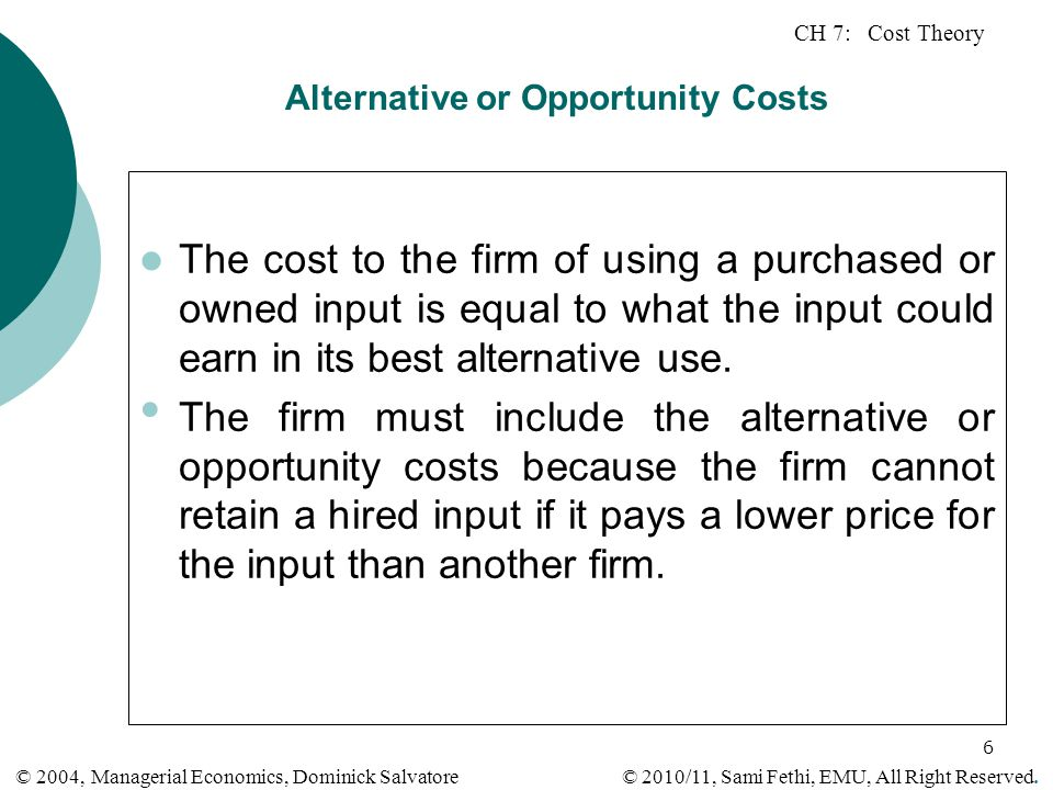 Alternative or Opportunity Costs