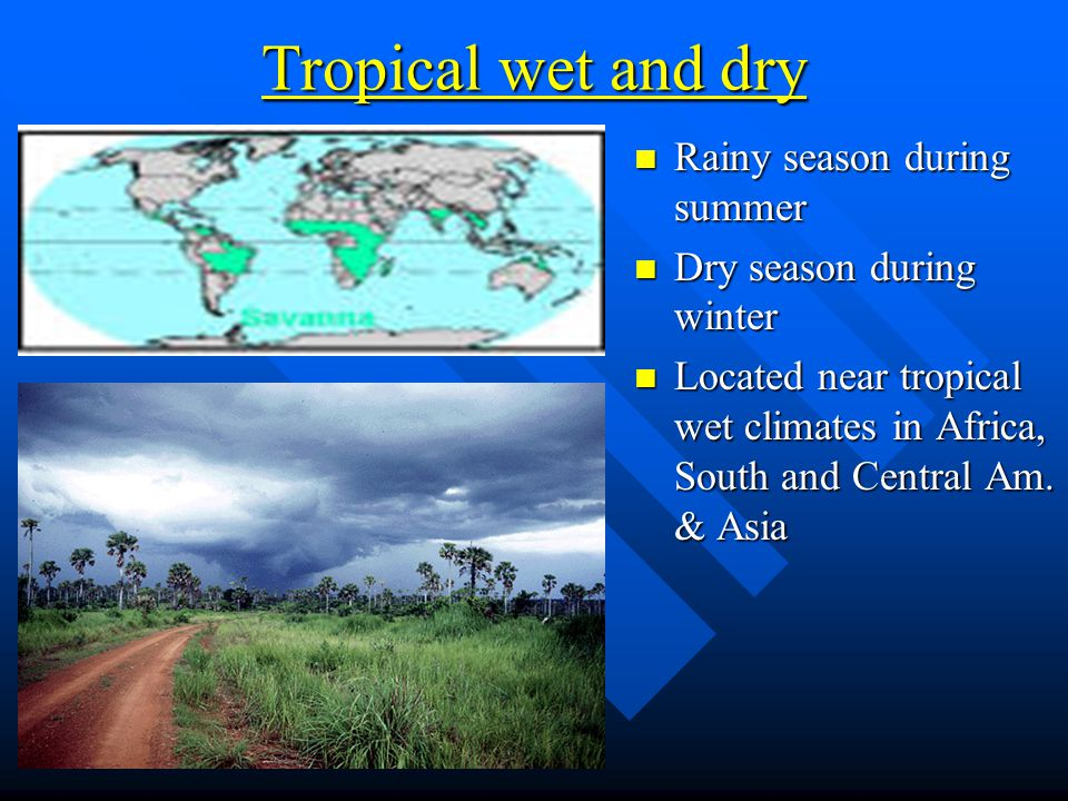 Tropical wet and dry Rainy season during summer