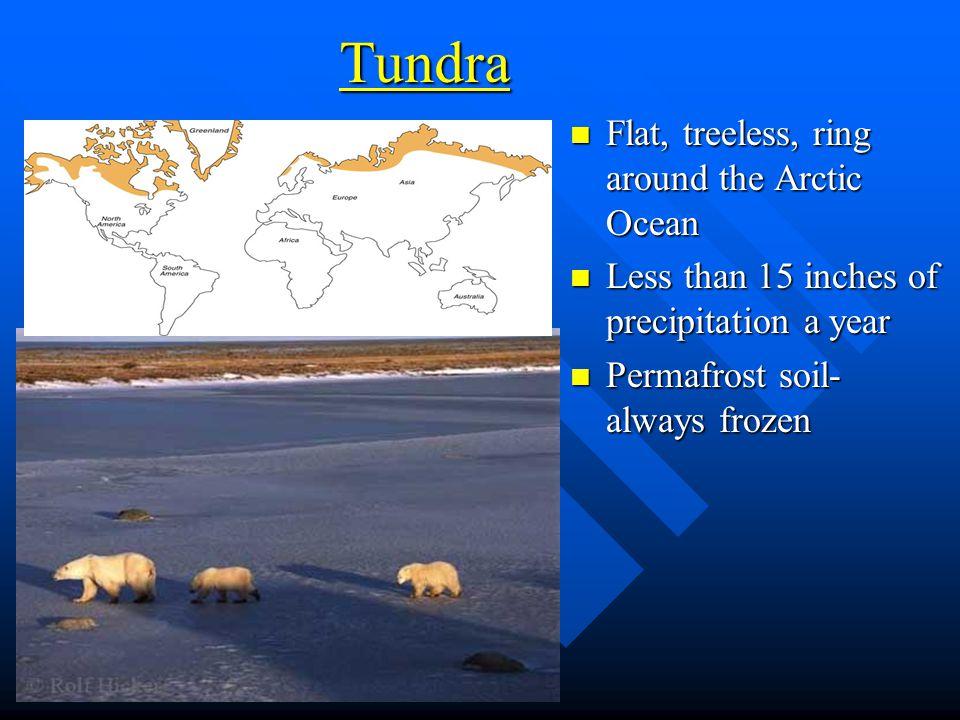 Tundra Flat, treeless, ring around the Arctic Ocean