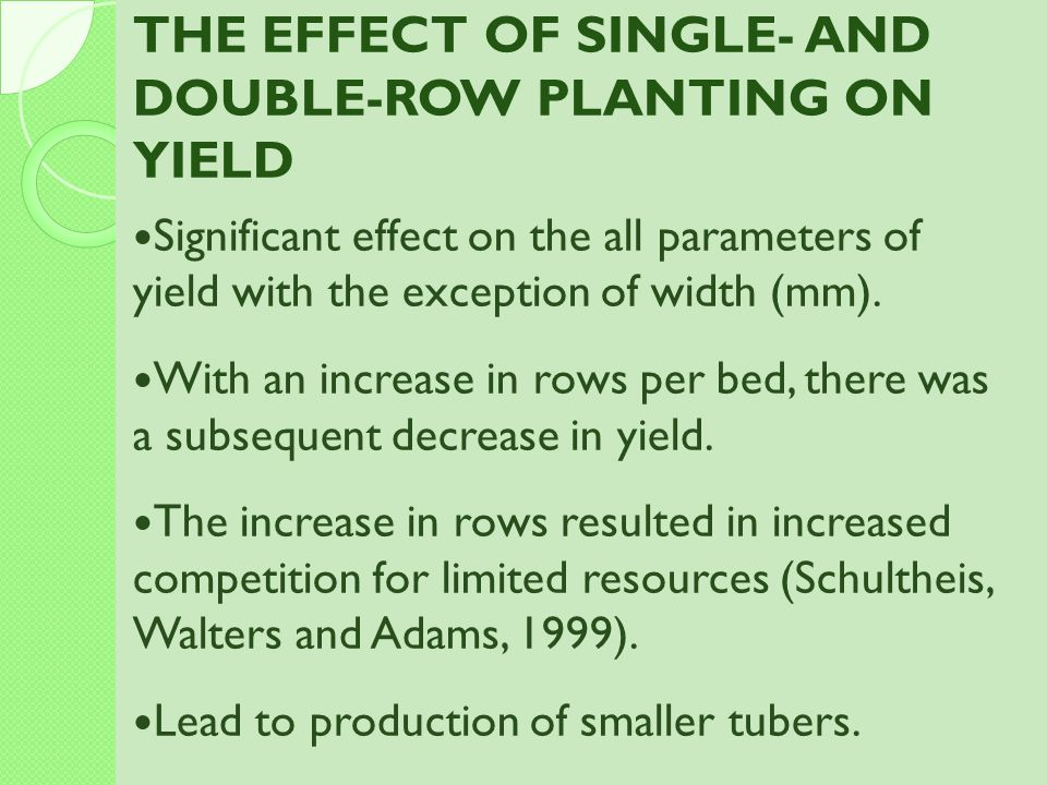 THE EFFECT OF SINGLE- AND DOUBLE-ROW PLANTING ON YIELD
