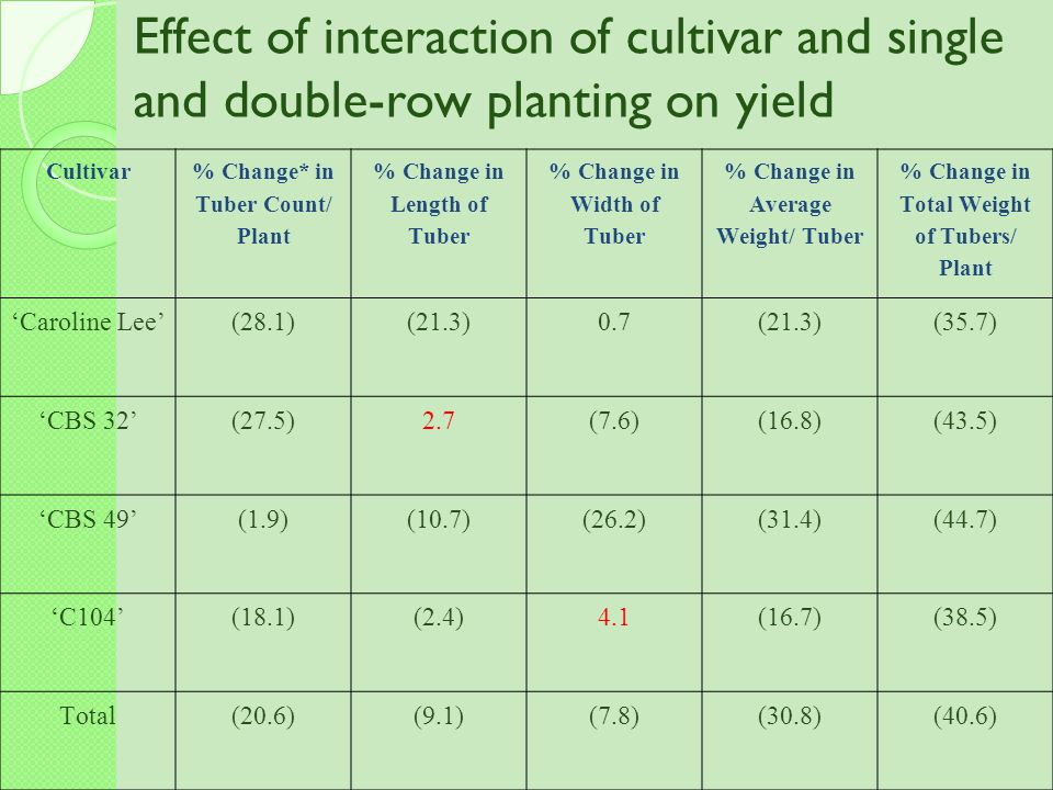 Effect of interaction of cultivar and single and double-row planting on yield
