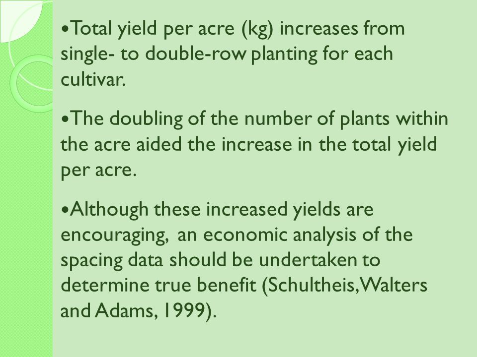 Total yield per acre (kg) increases from single- to double-row planting for each cultivar.