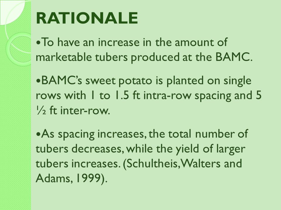 RATIONALE To have an increase in the amount of marketable tubers produced at the BAMC.