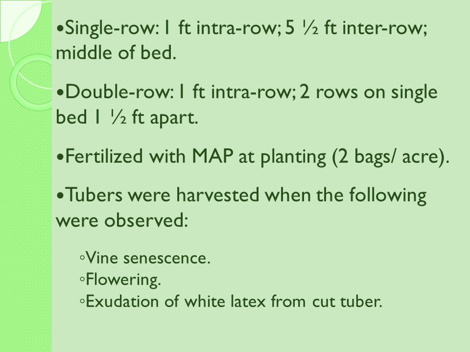 Single-row: 1 ft intra-row; 5 ½ ft inter-row; middle of bed.