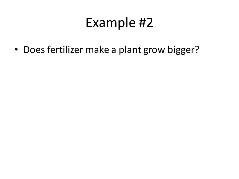 Example #2 Does fertilizer make a plant grow bigger