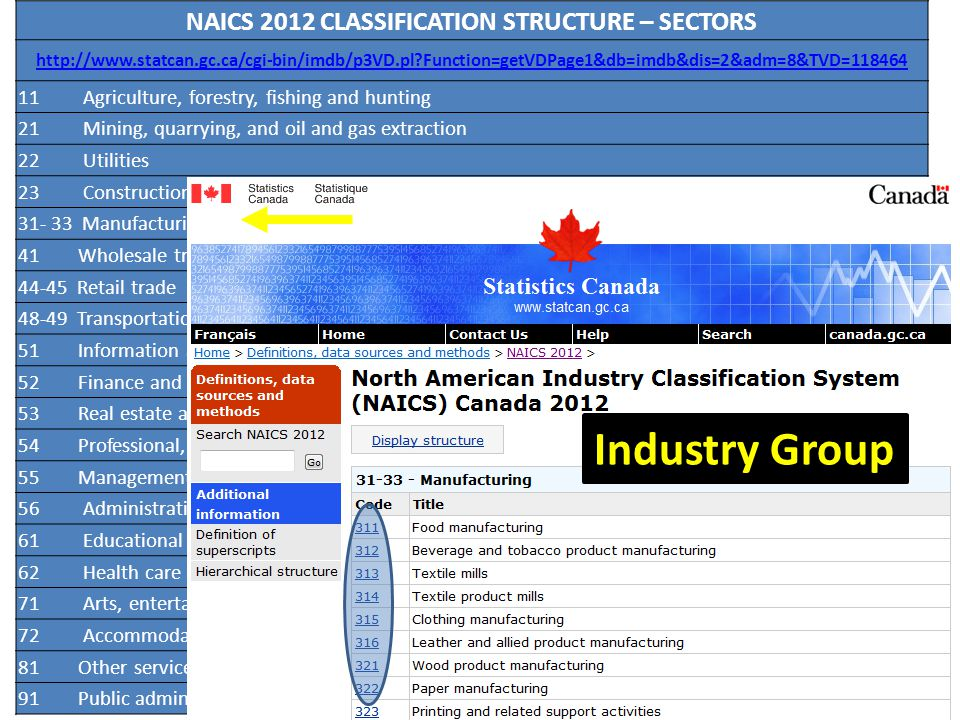 Industry Group ECONOMIC ACTIVITY CLASSIFICATION SYSTEMS