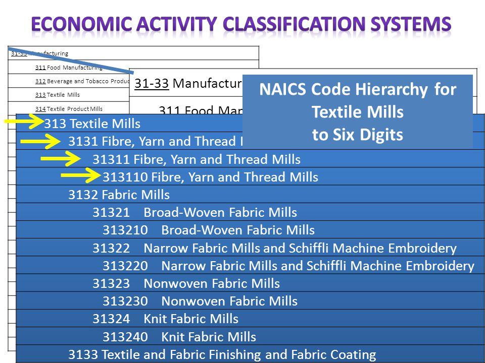 ECONOMIC ACTIVITY CLASSIFICATION SYSTEMS