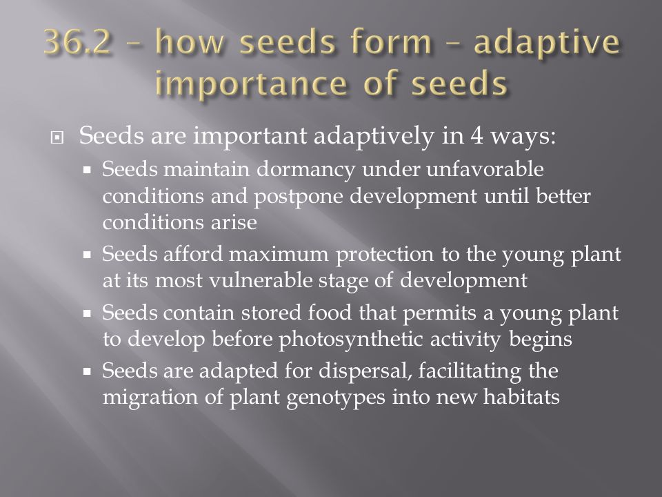 36.2 – how seeds form – adaptive importance of seeds
