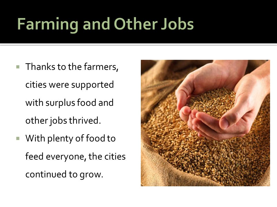 Farming and Other Jobs Thanks to the farmers, cities were supported with surplus food and other jobs thrived.
