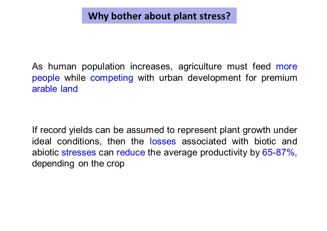 Why bother about plant stress