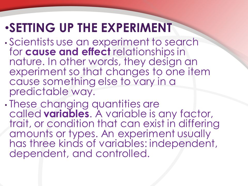 SETTING UP THE EXPERIMENT