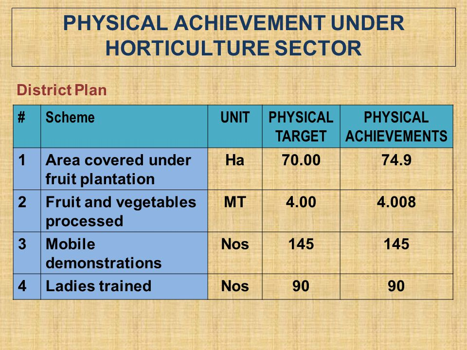 PHYSICAL ACHIEVEMENT UNDER HORTICULTURE SECTOR