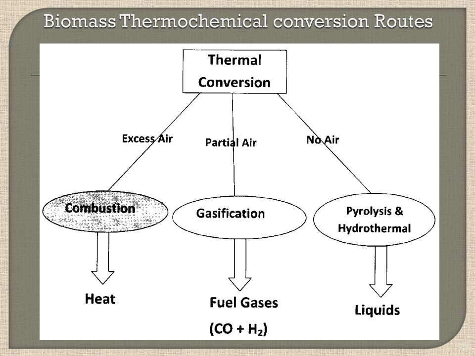 Biomass Thermochemical conversion Routes