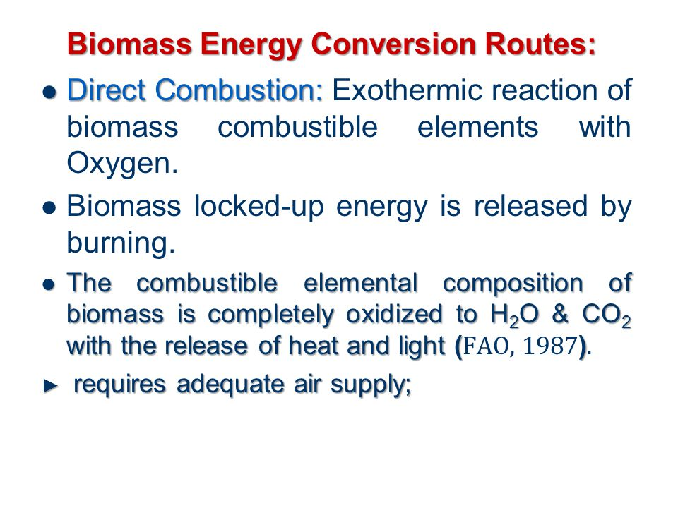 Biomass Energy Conversion Routes: