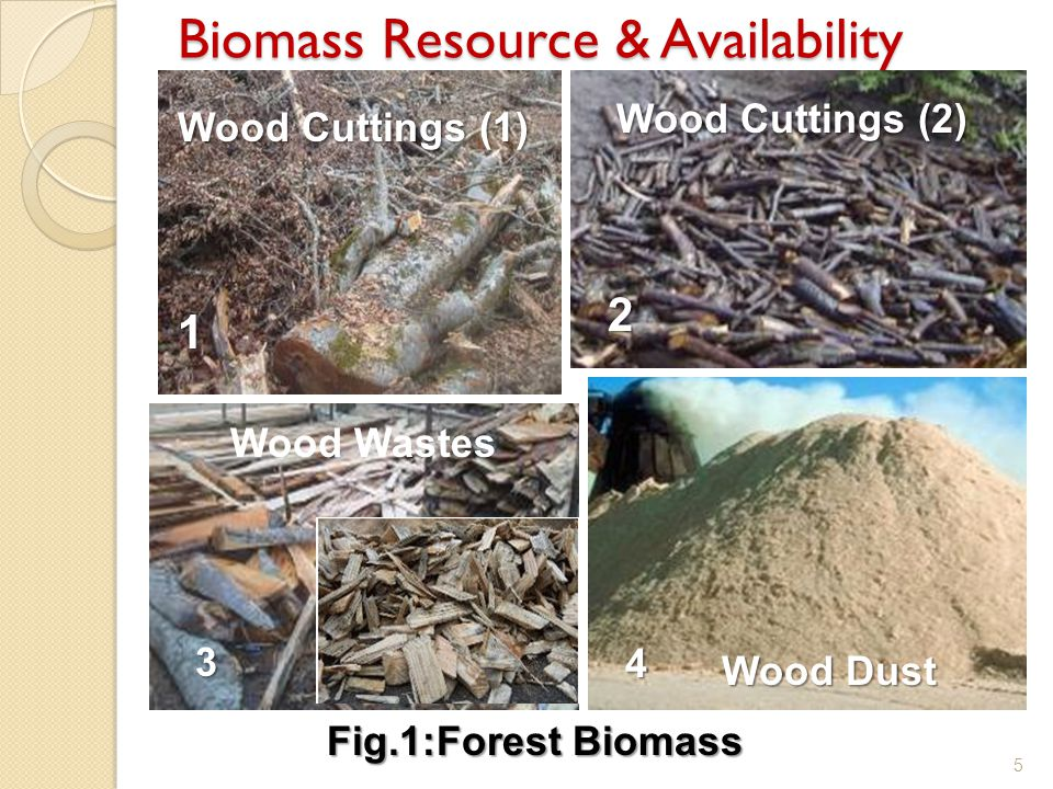 Biomass Resource & Availability