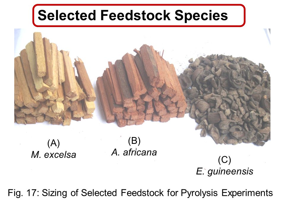 Selected Feedstock Species