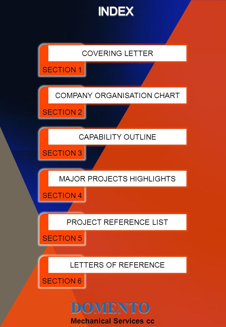DOMENTO INDEX COVERING LETTER SECTION 1 COMPANY ORGANISATION CHART