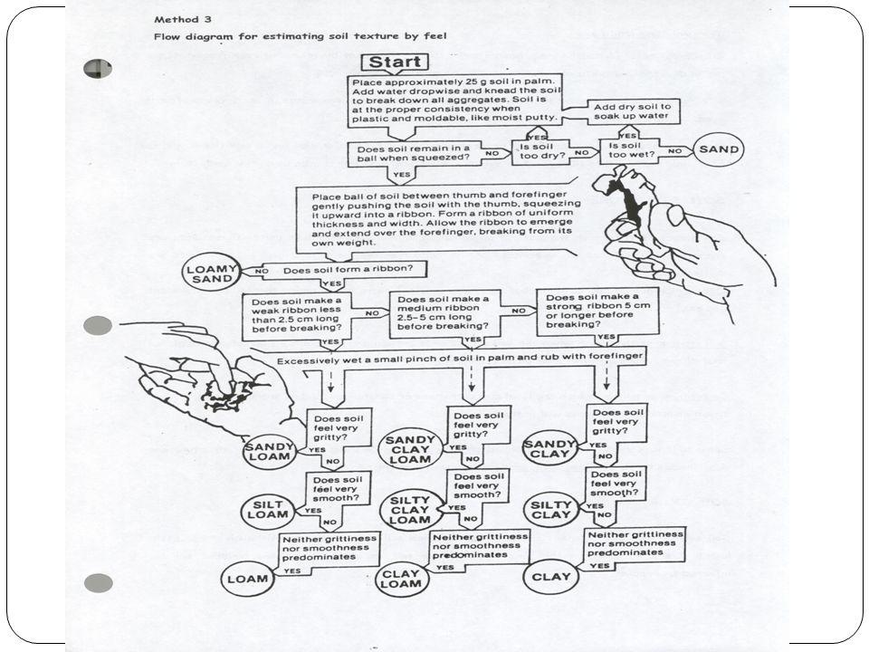 Flow chart for the feel method.