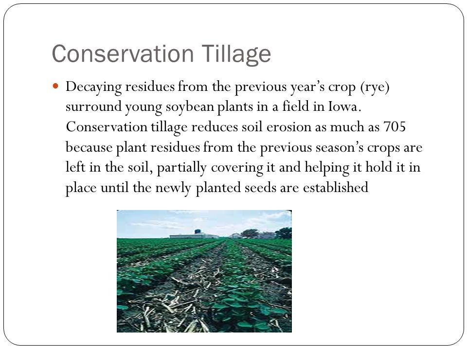 Conservation Tillage