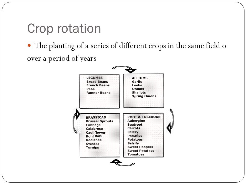 Crop rotation The planting of a series of different crops in the same field o.