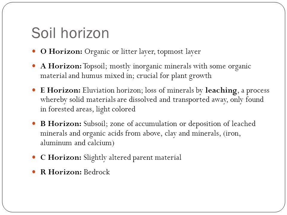 Soil horizon O Horizon: Organic or litter layer, topmost layer