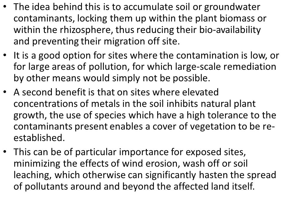 The idea behind this is to accumulate soil or groundwater contaminants, locking them up within the plant biomass or within the rhizosphere, thus reducing their bio-availability and preventing their migration off site.
