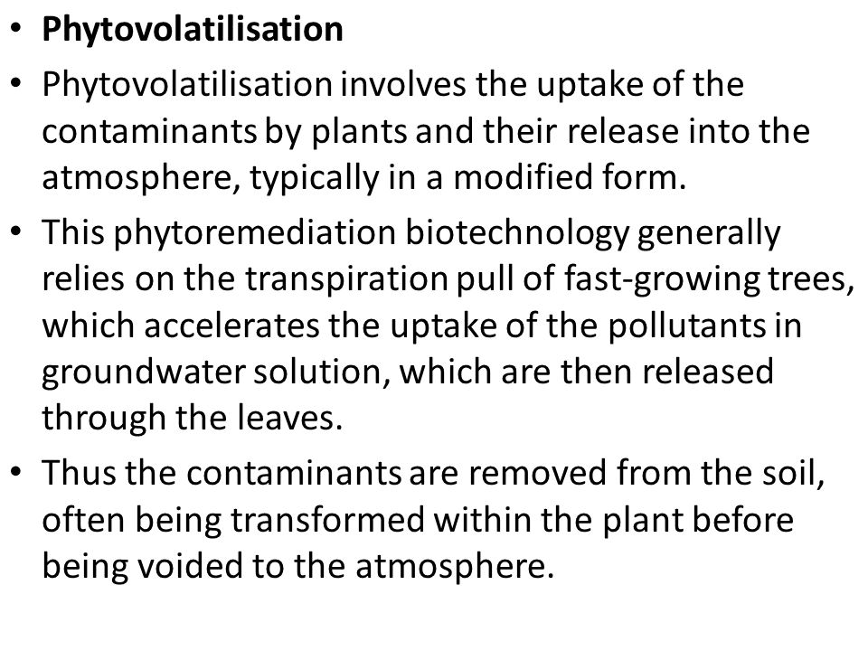 Phytovolatilisation