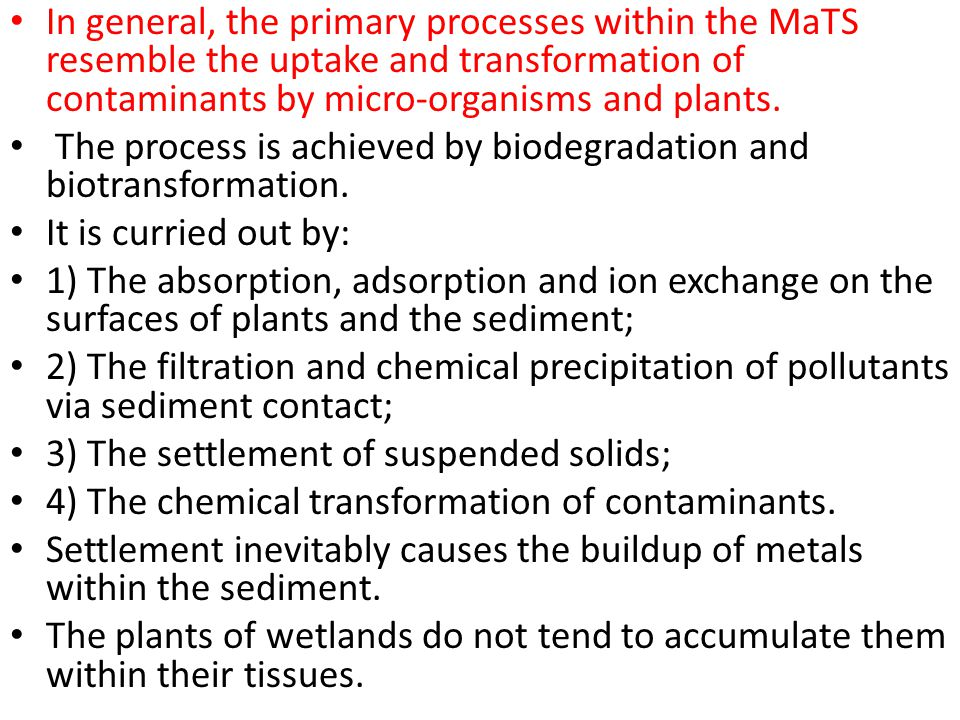 In general, the primary processes within the MaTS resemble the uptake and transformation of contaminants by micro-organisms and plants.