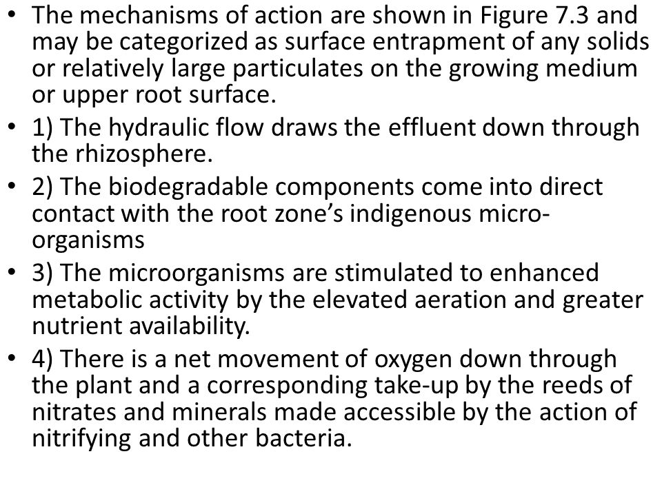 The mechanisms of action are shown in Figure 7
