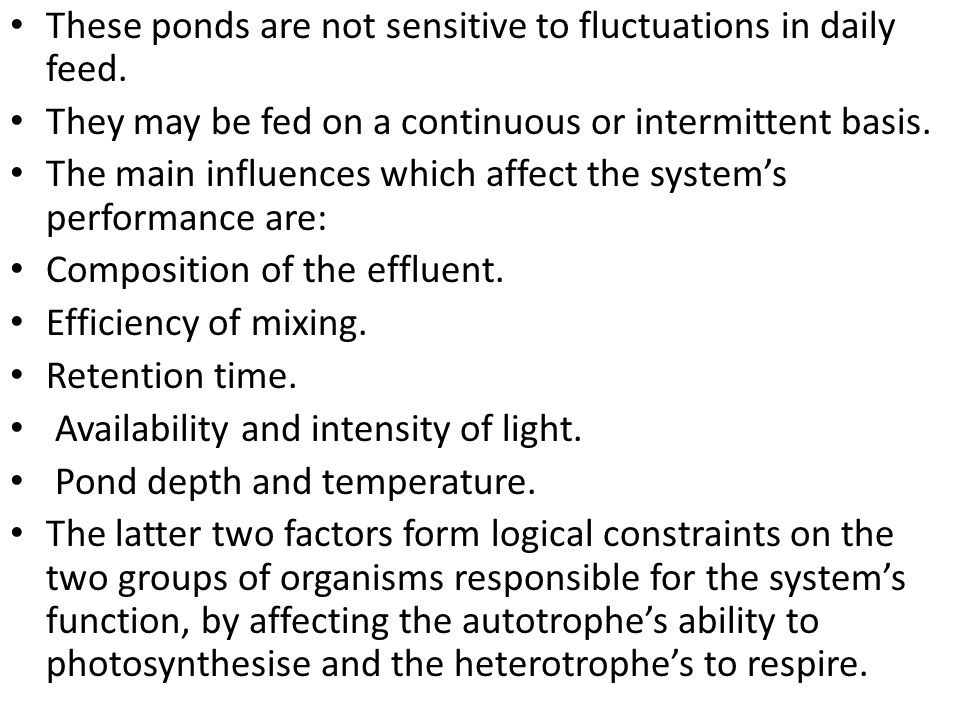 These ponds are not sensitive to fluctuations in daily feed.
