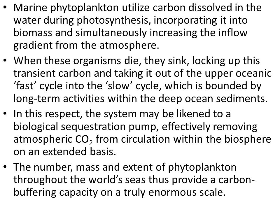 Marine phytoplankton utilize carbon dissolved in the water during photosynthesis, incorporating it into biomass and simultaneously increasing the inflow gradient from the atmosphere.