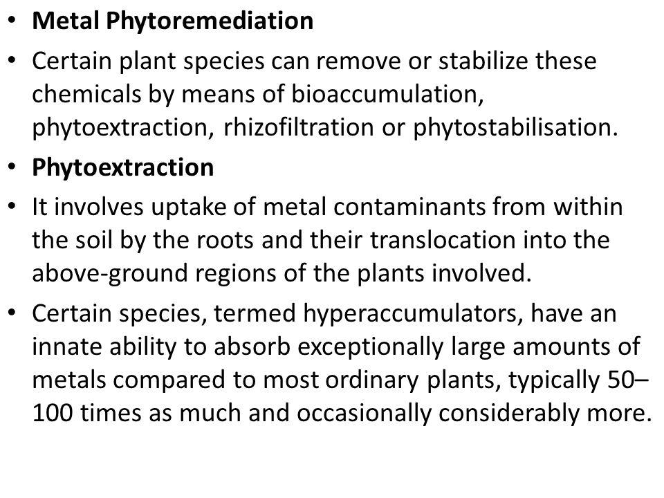Metal Phytoremediation