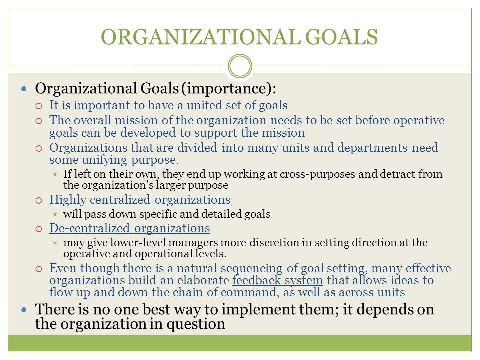ORGANIZATIONAL GOALS Organizational Goals (importance):