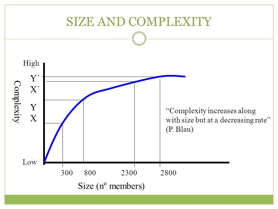 SIZE AND COMPLEXITY Y´ X´ Complexity Y X Size (nº members) High