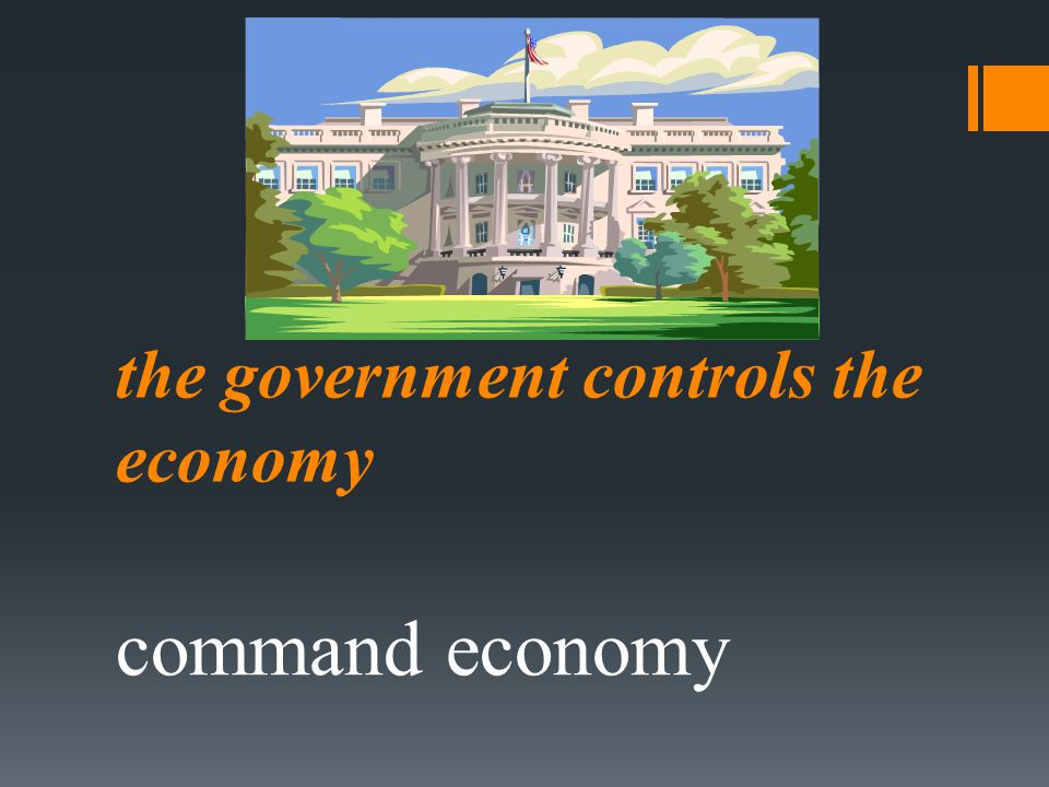 the government controls the economy