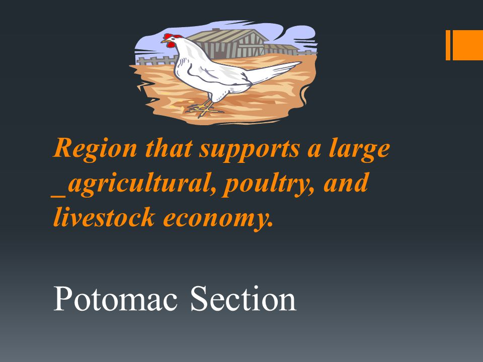 Region that supports a large _agricultural, poultry, and livestock economy.