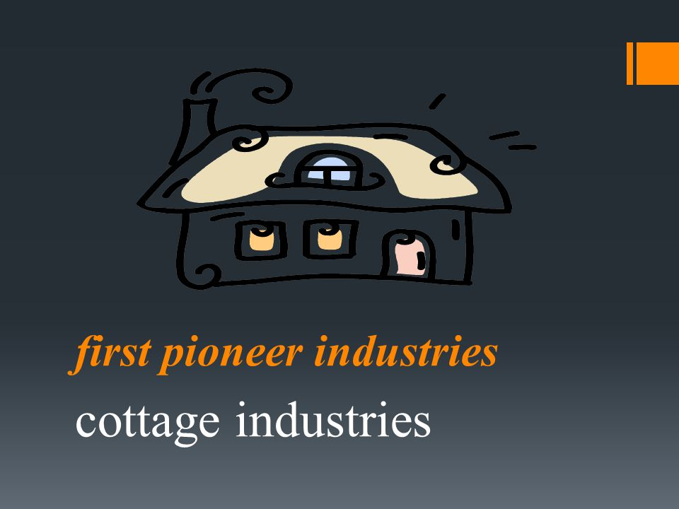 first pioneer industries