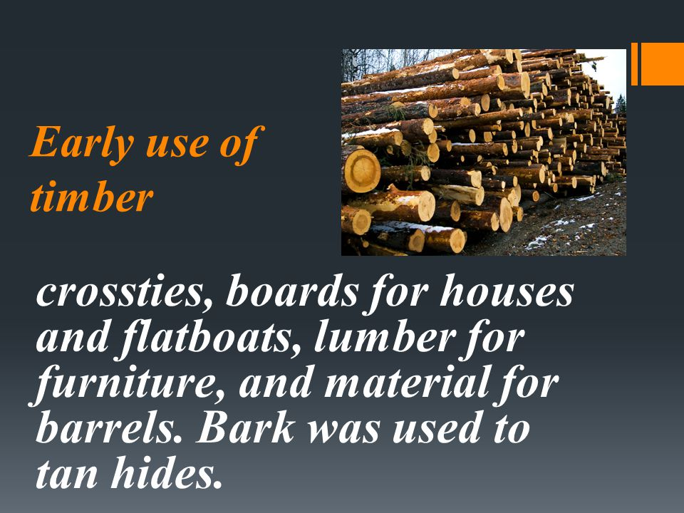 Early use of timber crossties, boards for houses and flatboats, lumber for furniture, and material for barrels.