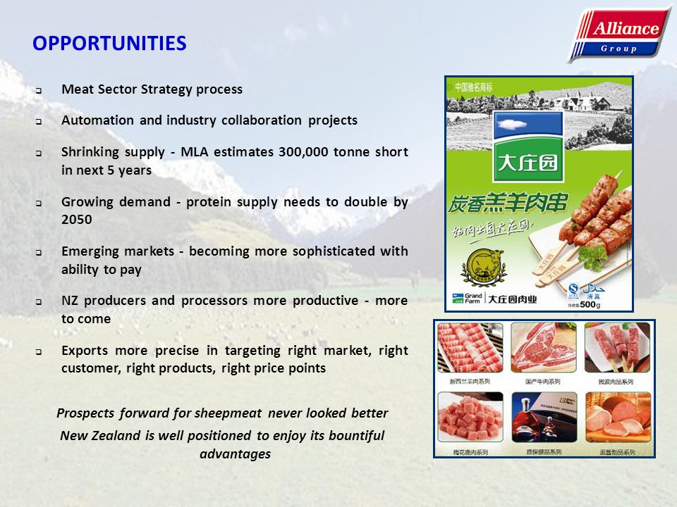 OPPORTUNITIES Meat Sector Strategy process