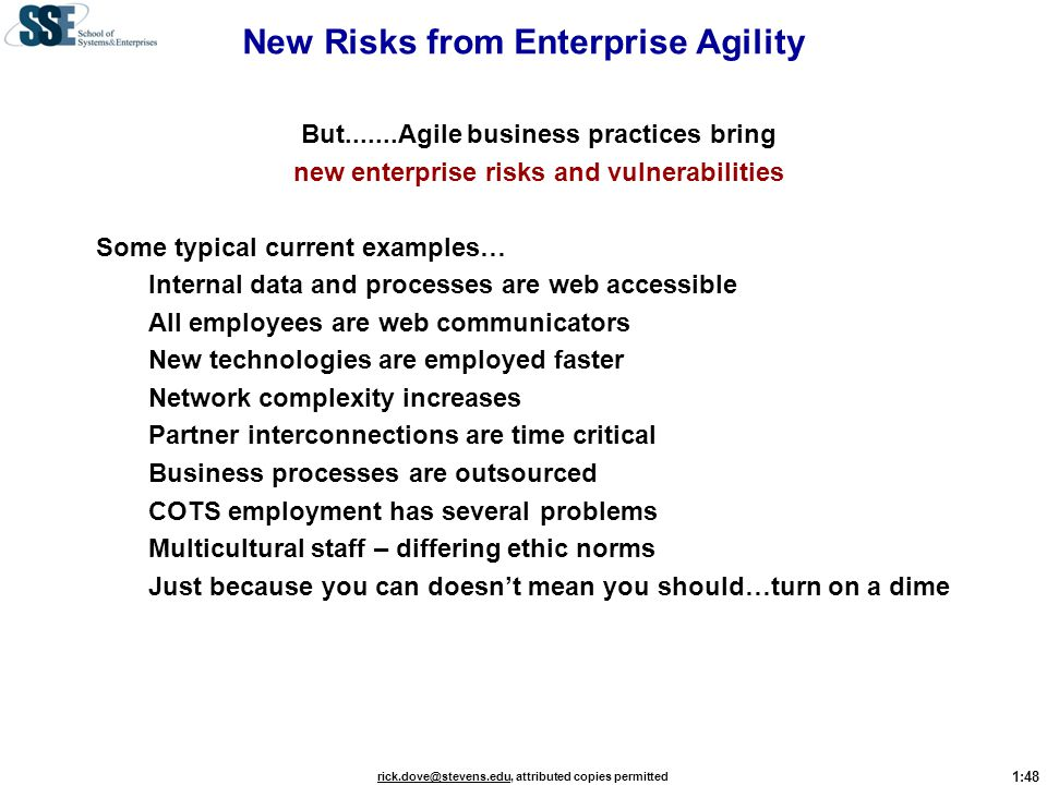 New Risks from Enterprise Agility