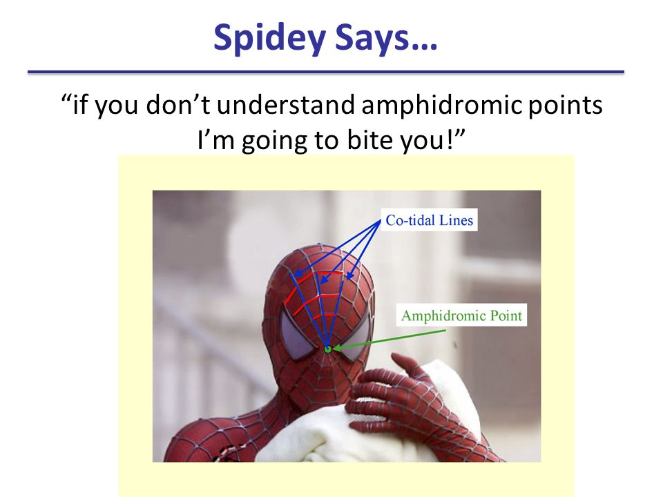if you don't understand amphidromic points I'm going to bite you!