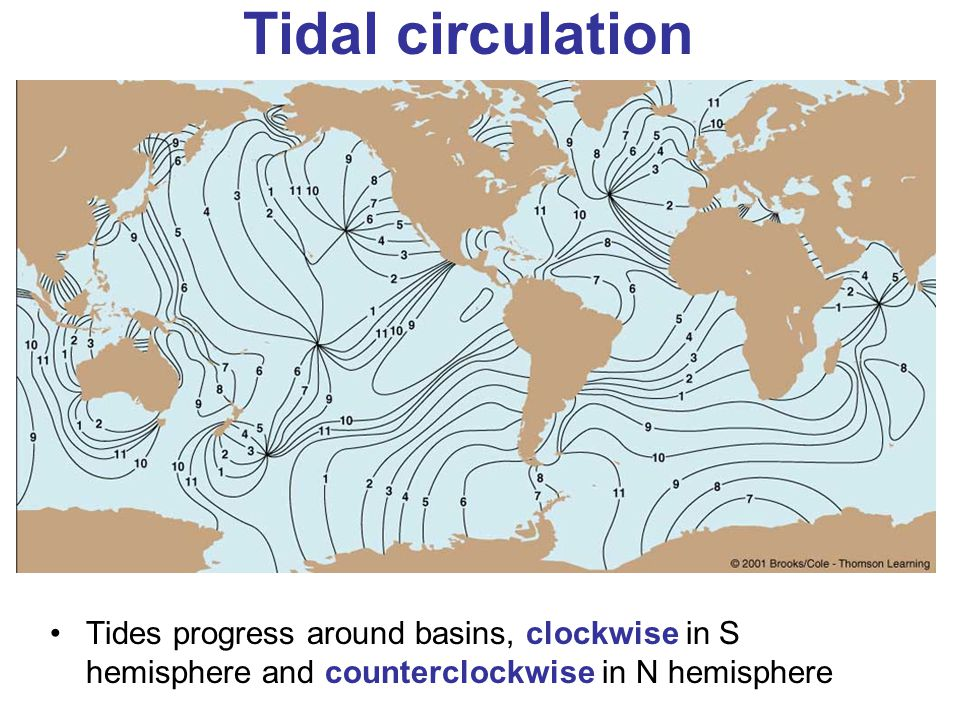 Tidal circulation Tides progress around basins, clockwise in S hemisphere and counterclockwise in N hemisphere.
