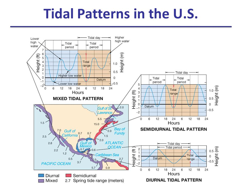 Tidal Patterns in the U.S.