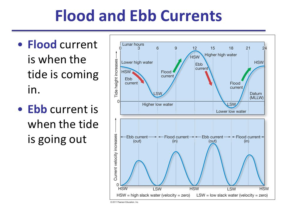 Flood and Ebb Currents Flood current is when the tide is coming in.