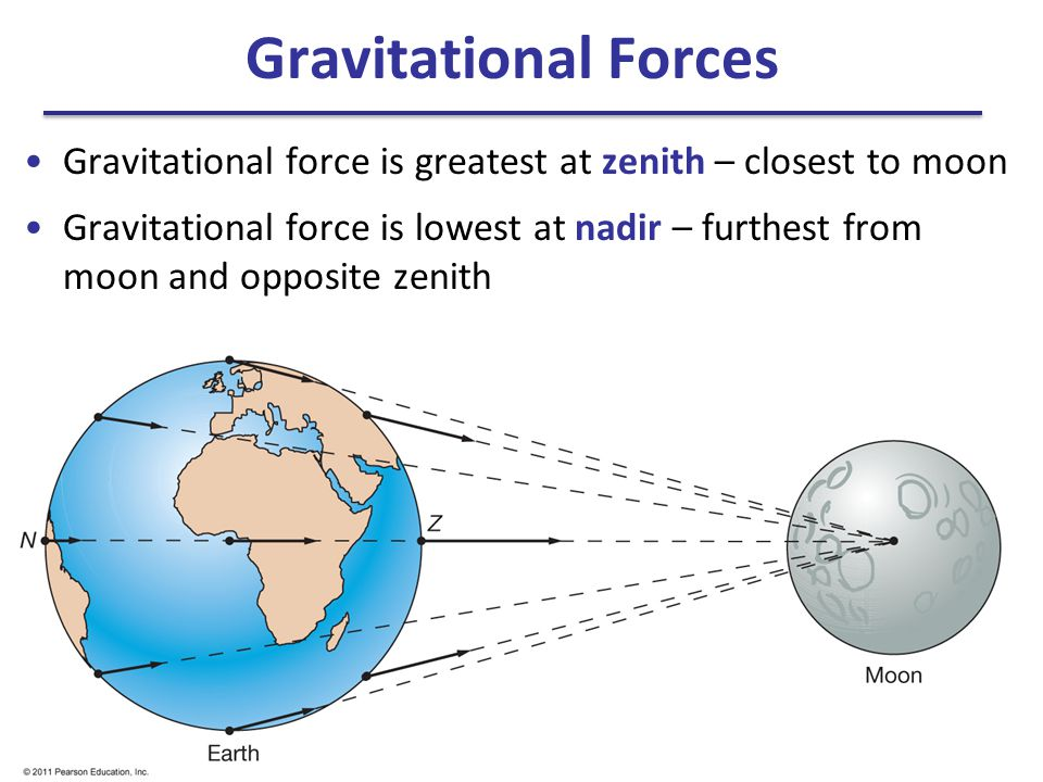 Gravitational Forces Gravitational force is greatest at zenith – closest to moon.