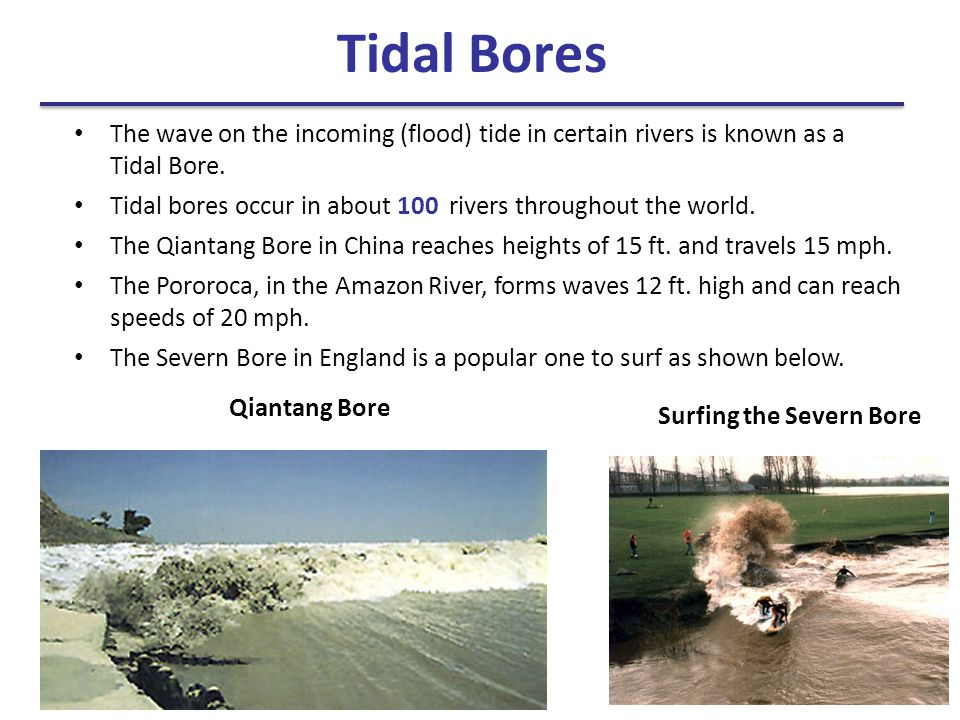 Tidal Bores The wave on the incoming (flood) tide in certain rivers is known as a Tidal Bore.